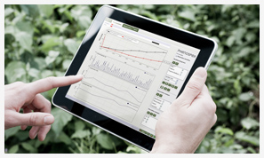 Phenospex software helps to analyse plant phenotyping data on various levels