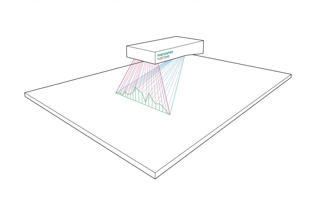 Scanning Principle of PlantEye using Laser Light Section