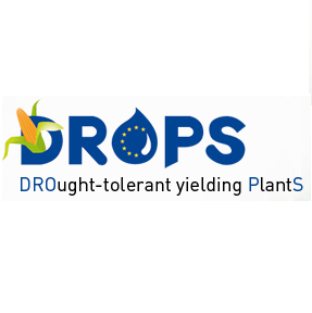 Drops conference on drought stress in plants