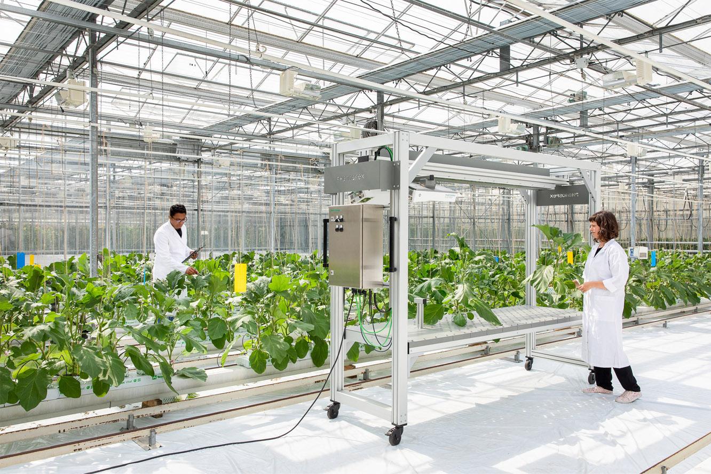TraitFinder - Digital plant phenotyping